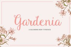 Check out Gardenia Script by Sweet Type on Creative Market Very, very, very cute. :D #resources #font