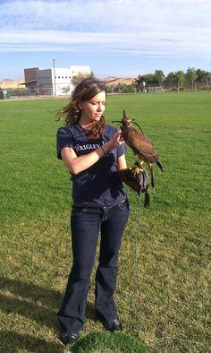 Kristy with a passage Harris Hawk
