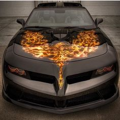 Pontiac Firebird Trans Am                                                       …