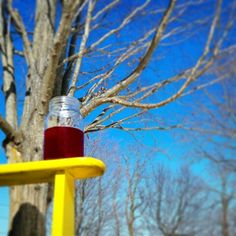 Spring is coming! So is our iced tea♡ - Apple Bliss♡ www.teageekeryteas.com