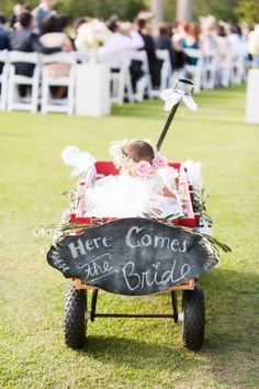 baby flower girl in red wagon - photo by Candice Benjamin Photography