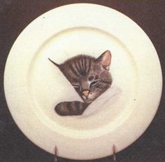 pullman dinner plate - Google Search