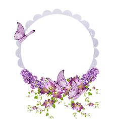 A little lavender and butterflies with frame