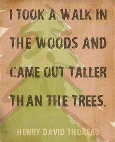 Henry David Thoreau quote...