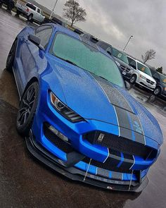 Custom Ford Mustang nera e blu 🇺🇲🇺🇲 S550 Mustang, Ford Mustang Shelby Gt500, Ford Shelby, Ford Gt, Autos Ford, Shelby Gt 500, Ford Mustang Classic, Pony Car, Sexy Cars