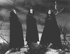 ladies & their witchings; witchery