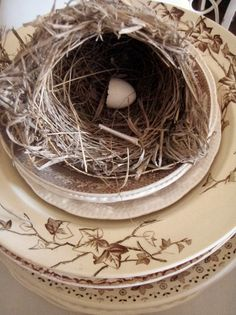 Fall Nesting