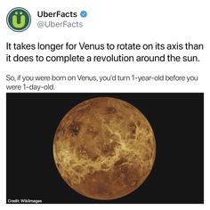 Uber Facts, Wow Facts, Wtf Fun Facts, True Facts, Random Facts, Random Stuff, The More You Know, Good To Know, Science Facts