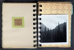 found paper journal {cori kindred}