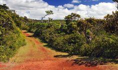 Les 10 lieux à ne pas manquer sur l'Ile Maurice