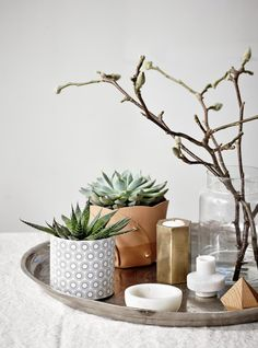 How To Liven Your Home With Greenery