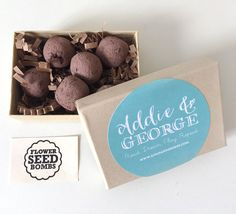 Mini Garden Kit for Kids Childrens Gifts 6 by AddieandGeorge