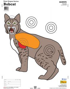 Animals with Vital Organs Series - x 10 Pack Shooting Targets, Archery Targets, Bow Hunting, Hunting Stuff, Paper Targets, Outdoor Survival Gear, Recurve Bows, Target Practice, Bowfishing
