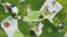 Pantone's 2017 Color of the Year is Greenery A refreshing and revitalizing shade, Greenery is symbolic of new beginnings.