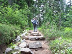 Fitness:  Walk Your Way To Better Health and Take the 365/365 Challenge