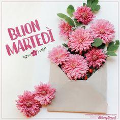 Buon Martedì - fiori in busta