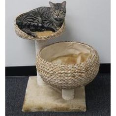 Even better. Some how I think my dogs would steal this from my cat. PetPal Cat Furniture with 2 Nesting Areas and Scratch Post