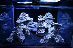 how to aquascape a reef aquarium from the top here is a link to my build