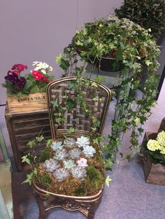 photo pod at photography show nec- succulent chair - vase flowers - wooden ladders - plants - flowers - crates- exhibition set up - stand set up - photo opportunities - succulent chair