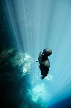 #Freediving the #Cenotes