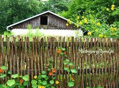 Image result for cottage garden picket fence