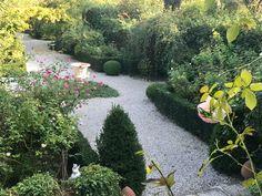 the Secret Garden at Ca' delle Rose in Autumn sunny day Sunny Days, Stepping Stones, Autumn, Garden, Outdoor Decor, Stair Risers, Garten, Fall Season, Lawn And Garden