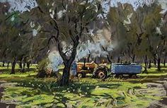 olive groves - Google Search