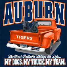 Auburn Tigers Football T-Shirts War Eagle - Unique College T-Shirts Sec Football, Football Memes, Football Cards, Auburn Football Quotes, Auburn Quotes, Auburn Tigers, College T Shirts, Pet Tiger, Auburn University