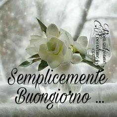 Buon Compleanno Silvana Compleanni Onomastici E Anniversari