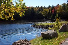Oswegatchie River by the Ranger School