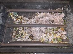 pack rats nest!! yeek 886-PEST