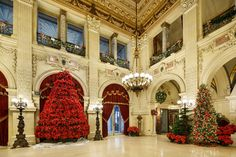 The Great Hall of the Breakers, built in Newport, R.I., by Cornelius Vanderbilt II in 1895, features an immense poinsettia 'tree'.