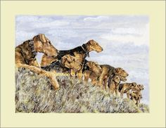 Incentive (August 17th - August 20th) for donations to Airedale Rescue Quilt 'Garden Party' 2012   - Ann Curran