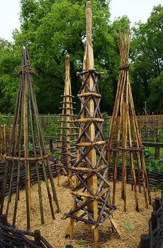 .Unusual plant supports made of wood | by KarlGercens.com GARDEN LECTURES