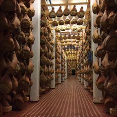 """Emilia Romagna: paraíso gastronômico italiano"" by @Milaonasmaos"