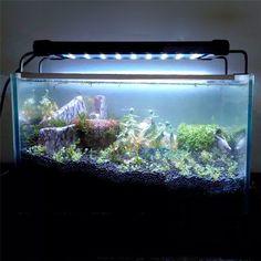 Juwel Aquarium Beleuchtung | Beispielfoto Zur Led Leiste Growx5 Led Beleuchtung Aquarium