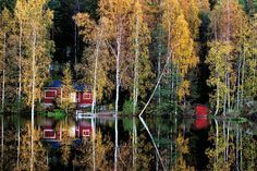 Summer cottage in autumn colours - Visit Finland One Summer, Cabins In The Woods, Best Cities, Trip Planning, Planning Maps, Plan Your Trip, Where To Go, The Great Outdoors, Countryside