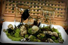 Like the inverted jars on moss-filled tray... Change contents to reflect event.   Spooky Halloween Terrarium