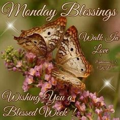 Monday Blessings monday monday quotes monday blessings monday images