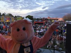 Mascot Willie B. Bacon #StAugustine's annual #RhythmRibs #Festival celebrates delicious #barbecue #livemusic and good times, with live entertainment and chefs competing for the best #BBQ. The 2018 festival will take place Friday through Sunday, April 6 – 8th at Francis Field.  All proceeds go to charities of St. Augustine Sunrise #Rotary For full info go to www.rhythmandribs.net