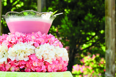 Raspberry Smoothie Punch: Raspberry Sherbet and 2 liters lemon-lime soda. Hydrangea Not Blooming, Hydrangea Wreath, Bridal Shower, Baby Shower, Floral Pins, Party Rock, Floral Foam, Wreath Forms, Luau Party