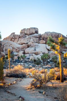 Hall of Horrors at Joshua Tree