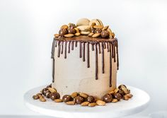 Mocha Chocolate Cake – Meghan Rienks