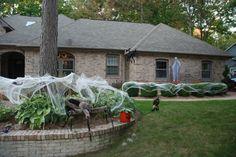 Halloween Theme.