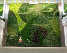 Living Wall Ideas | Types of Gardens and Garden Style | HGTV