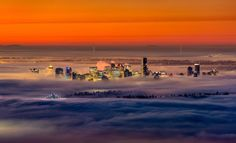 Vancouver is carpeted in thick fog with the city's skyscrapers poking out above the clouds. The eery photographs were captured by British ex...