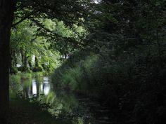 Arundel castle's moat.