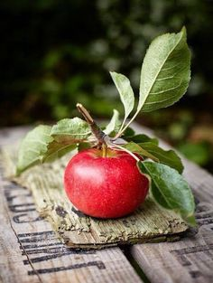 Country Living ~ fresh apples