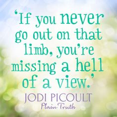A quote from the one and only Jodi Picoult