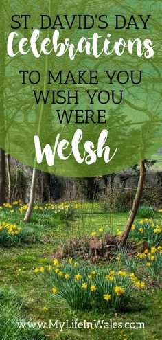 Happy Saint David's Day! Do you know who the patron saint of Wales is? What wearing leeks & daffodils mean? Or what food, activities or celebrations to have on Saint David's Day? National Flower Of Wales, Best Of Wales, Inspirational Mottos, Wales Flag, Dragon Fight, Stuff To Do, Things To Do, Saint David's Day, Christian Missionary